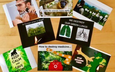 Wir retten den Regenwald