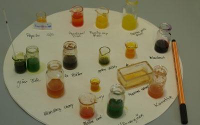 Begabtenförderung Biophysikalische Untersuchungs-Methoden
