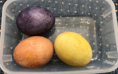 Naturtagebuch 3 – Eier Färben
